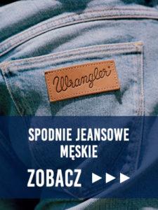 Spodnie Jeansowe Męskie Bluestilo Zobacz